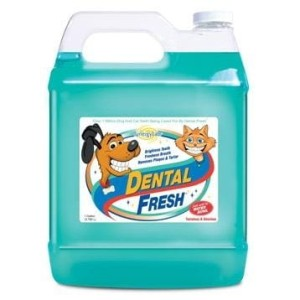 SynergyLabs - Dental Fresh - płyn do higieny jamy ustnej, 3,8 l